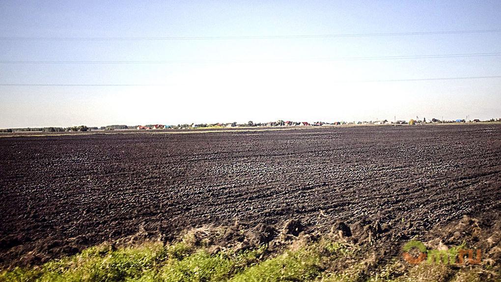 В Омской области аграрии приступили к посевной